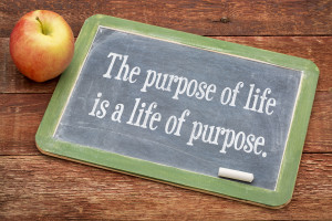 the purpose of life is a life of purpose - text   on a slate bla